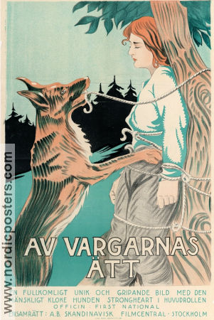 Av vargarnas ätt 1921 poster Strongheart the Dog Laurence Trimble