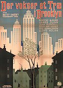 A Tree Grows in Brooklyn Poster 62x84cm Denmark FN original