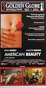 American Beauty Poster 30x70cm NM original