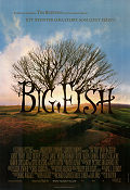 Big Fish Poster 70x100cm RO original