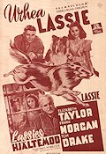 Courage of Lassie Poster FN 40x60 (Finland) original