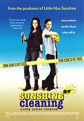 Sunshine Cleaning 2009 poster Amy Adams
