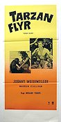 Tarzan flyr 1936 poster Johnny Weissmuller Richard Thorpe
