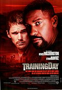 Training Day Poster 70x100cm RO original